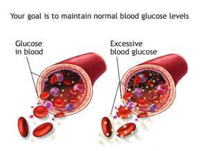 Obat Gula Darah Tradisional